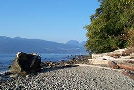 Acadia Beach in Pacific Spirit Regional Park (Photo by Bart Braun/ Wikimedia Commons)
