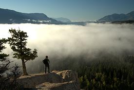 Dutch Creek Hoodoos, BC (Photo by Steve Ogle)