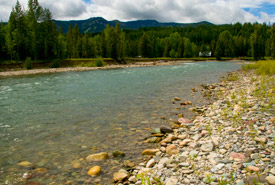Flathead River, BC