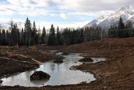 L'ancienne carrière après la restauration du milieu humide (Photo de la Elk River Alliance)