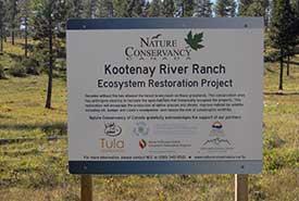 Kootenay River Ranch ecosystem restoration project (Photo by NCC)