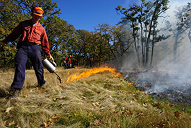 BC Wildfire Service staff member participating in prescribed burn (Photo by NCC)