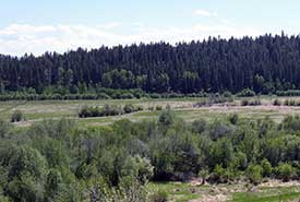 Farm fields on Cherry Meadows before restoration (Photo by NCC)