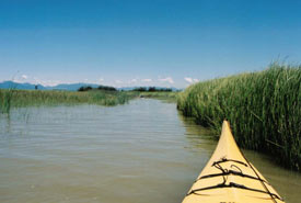 Kayaking to Swishwash Island Nature Sanctuary (Photo by NCC)
