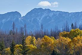 Kootenay River Ranch (Photo by Colin Way)