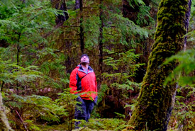 Old-growth forest on Kumdis River Conservation Area, Haida Gwaii. (Photo by Tim Ennis/NCC)