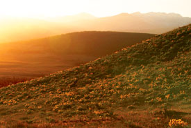 Sunset at Pine Butte Ranch (Photo by Tim Ennis/NCC)