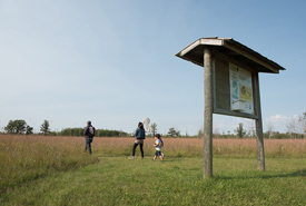 Agassiz Interpretive Trail, MB (Photo by Thomas Frickes)