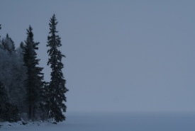 Boreal Forest Lake Fog, Whitemouth, MB (Photo by NCC)