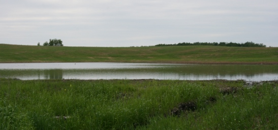 Marjerison Property wetland reclamation project, Manitoba (Photo by NCC)