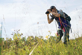 Searching for Poweshiek skipperlings (Photo by Thomas Fricke)