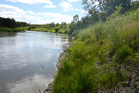Waggle Springs, Assiniboine Delta, MB (Photo by NCC)