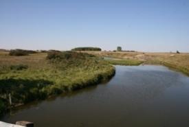 West Souris Mixed-grass Prairie, Manitoba (Photo by NCC)