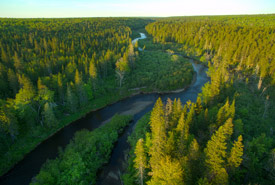 Aerial view of Foxner Nature Reserve, NB (Photo by Mike Dembeck)