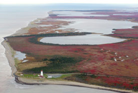 Miscou Island, at the northeast tip of New Brunswick (Photo by Mike Dembeck)