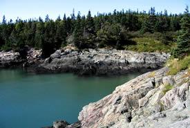 Musquash Estuary coast, New Brunswick (Photo by NCC)