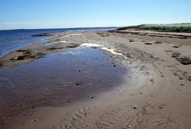 île Tern, Tabunsintac, Nouveau-Brunswick (photo de CNC)