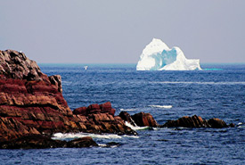Iceberg off of Maddox Cove, NL (Photo by Ronald Stone/Stone Island Photography)
