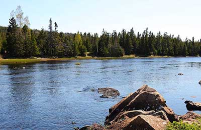 View of the Salmonier River, NL (Photo by Mike Dembeck)