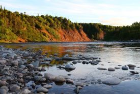 Crabbes River, NL (Photo by Mike Dembeck)