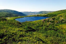 Mountaintop lake, Grassy Place, NL (Photo by NCC)