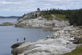 Dr. Bill Freedman Nature Reserve at Prospect High Head, NS (Photo by NCC)