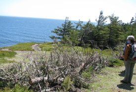 Gaff Point in Kingsburg, Lunenburg County, NS (Photo by NCC)