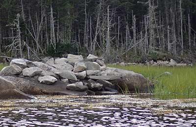Propriété sur l'aire naturelle Musquodoboit (Photo de CNC)