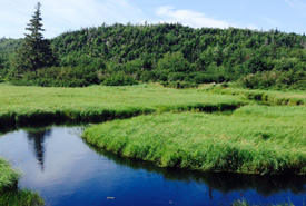 Musquodoboit River, NS (Photo by NCC)