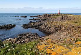 Brier Island, NS (Photo by NCC)