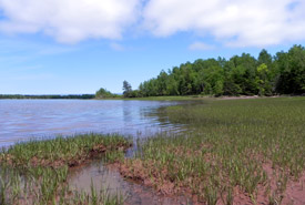 Pugwash Estuary, Nova Scotia (Photo by NCC)