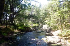 Stream on Stehelin property, NS (Photo by NCC)