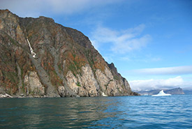 Cliffs of Cape Graham Moore, Bylot Island, NU (Photo by Christie MacDonald/NCC staff)