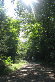 Hikers in Wolf Grove, ON (Photo by NCC)