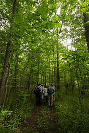 Leaders in Conservation tour, MacMillan Nature Reserve, ON (Photo by Wilson Chow)