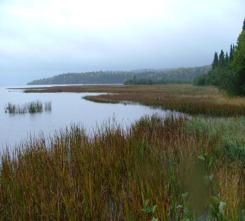 Lake Superior coastal wetland, Ontario (Photo by NCC)