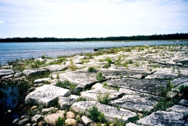 Southern Manitoulin Island coast, Ontario (Photo by NCC)