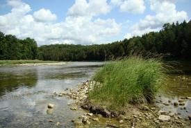 Maitland River, Ontario (Photo by NCC)