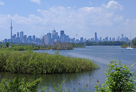 Tommy Thompson Park (Photo by Max Pixel CC0)