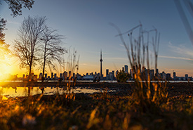 View of Lake Ontario coast from the Toronto Islands (Photo by Andre Furtado)