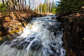 Waterfall, Vidal Bay, ON (Photo by Esme Batten)