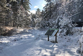Winter at the Hazel Bird Nature Reserve, ON (Photo by NCC)
