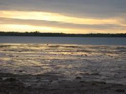 Percival River, Prince Edward Island (Photo by NCC)