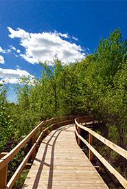 Réserve naturelle de la Tourbière-de-Venise-Ouest, Québec (Photo de CNC)