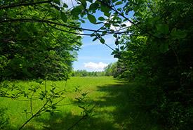 Ste-Agathe-des-Monts, Laurentians (Photo by NCC)