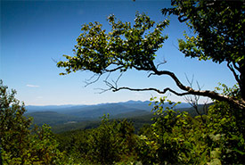 Réserve naturelle des Montagnes-Vertes, Québec (Photo de Corridor appalachien)