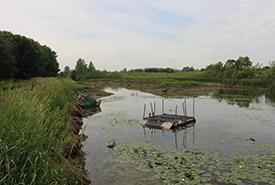 Unique restoration project at Lac Champlain (Photo by NCC)