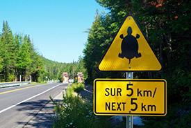 La signalisation routière de la présence de tortues à Saint-Mathieu-du-Parc a été installée à l'été 2019. (Photo de Parcs Canada)