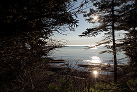 Not only does the area boast beautiful viewpoints and an abundance of wildlife, pointe Saint-Pierre has a rich historical importance too. (Photo by Mike Dembeck)