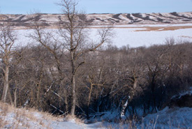 Big Valley, SK (Photo by Bill Armstrong)